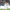 Konyaspor Serdar Gürler ile anlaştı